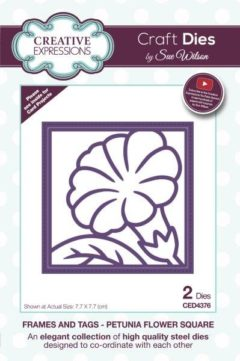 sue wilson craft die frames and tags petunia flower square