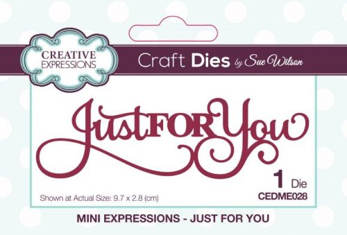 sue wilson craft die mini expressions just for you