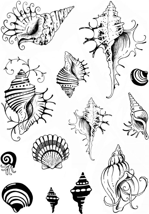 pink ink designs a5 stamp shells