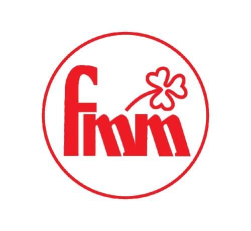 FMM Funcraft